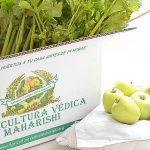 Agricultura védica orgánica Maharishi