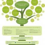 Medicina funcional: un nuevo enfoque de la medicina
