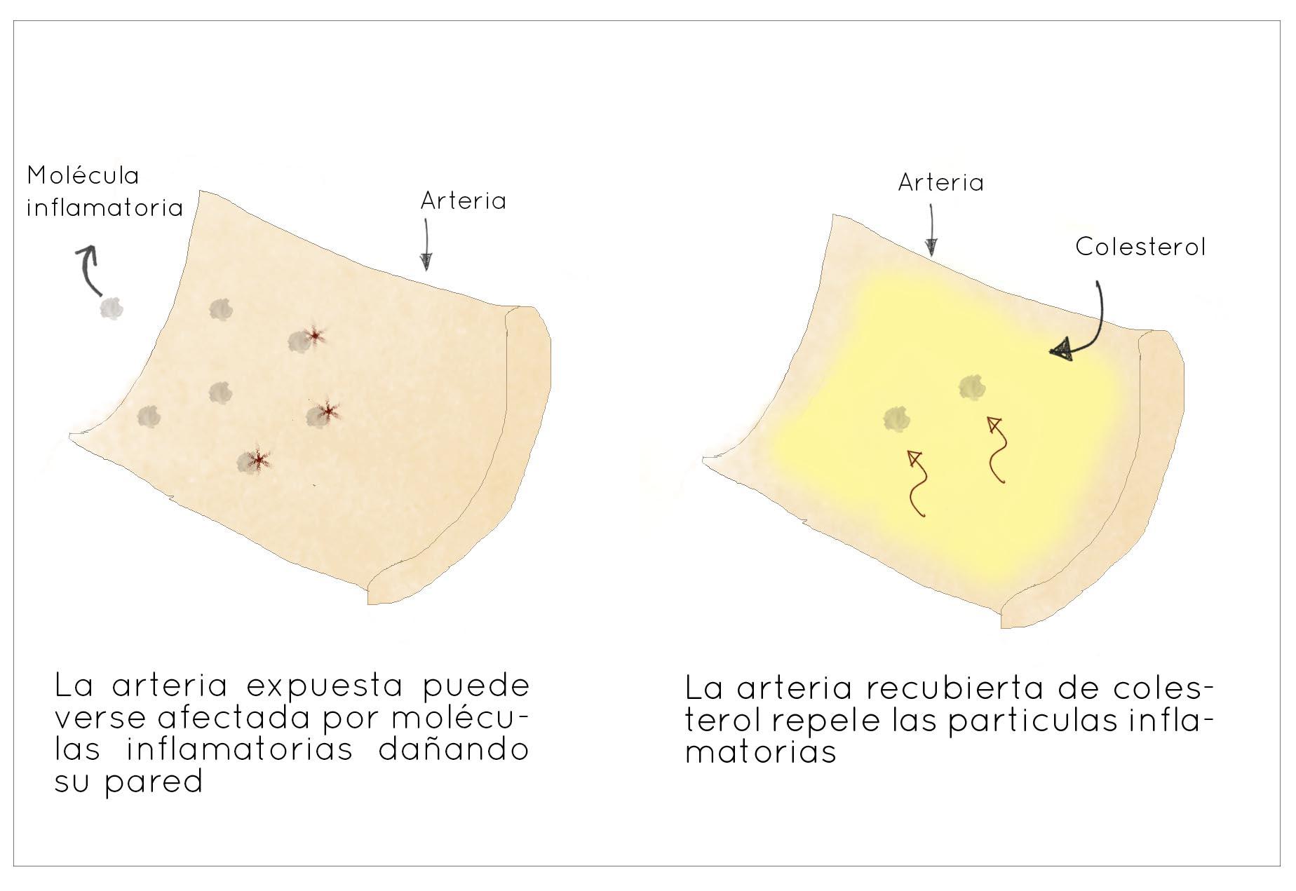 colesterol_esquema