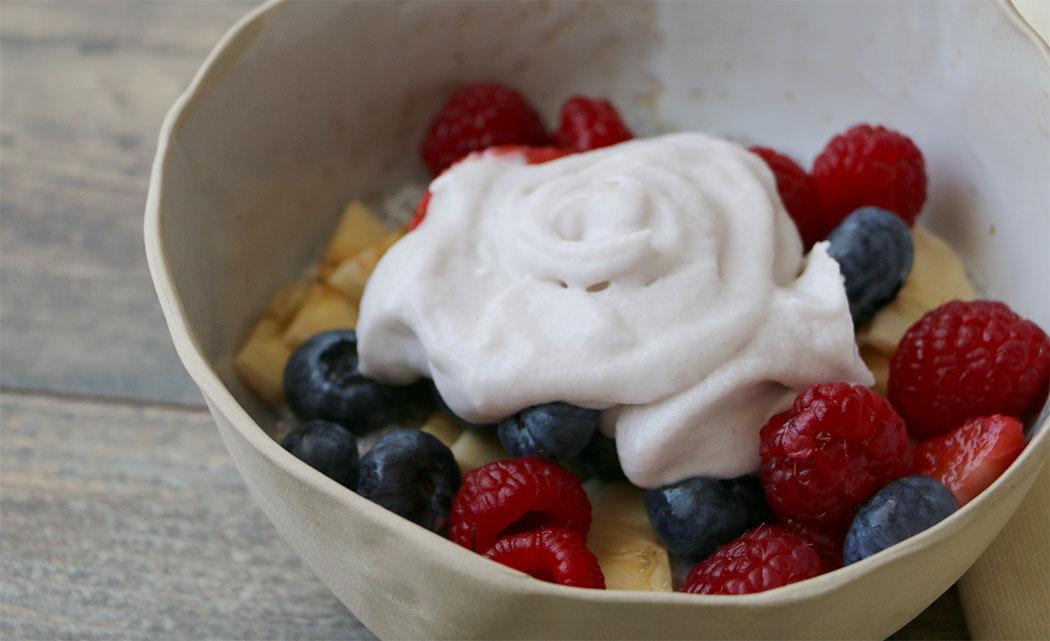 yogurt coco2
