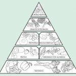 Mi pirámide saludable